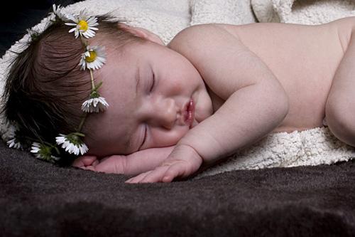 daisy sml lying down