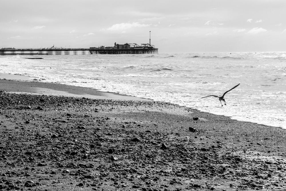 Black and white pictures of Brighton